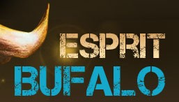 Esprit Bufal