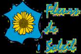 Fleurs de So