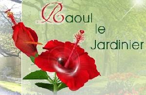 Raoul Le Jar